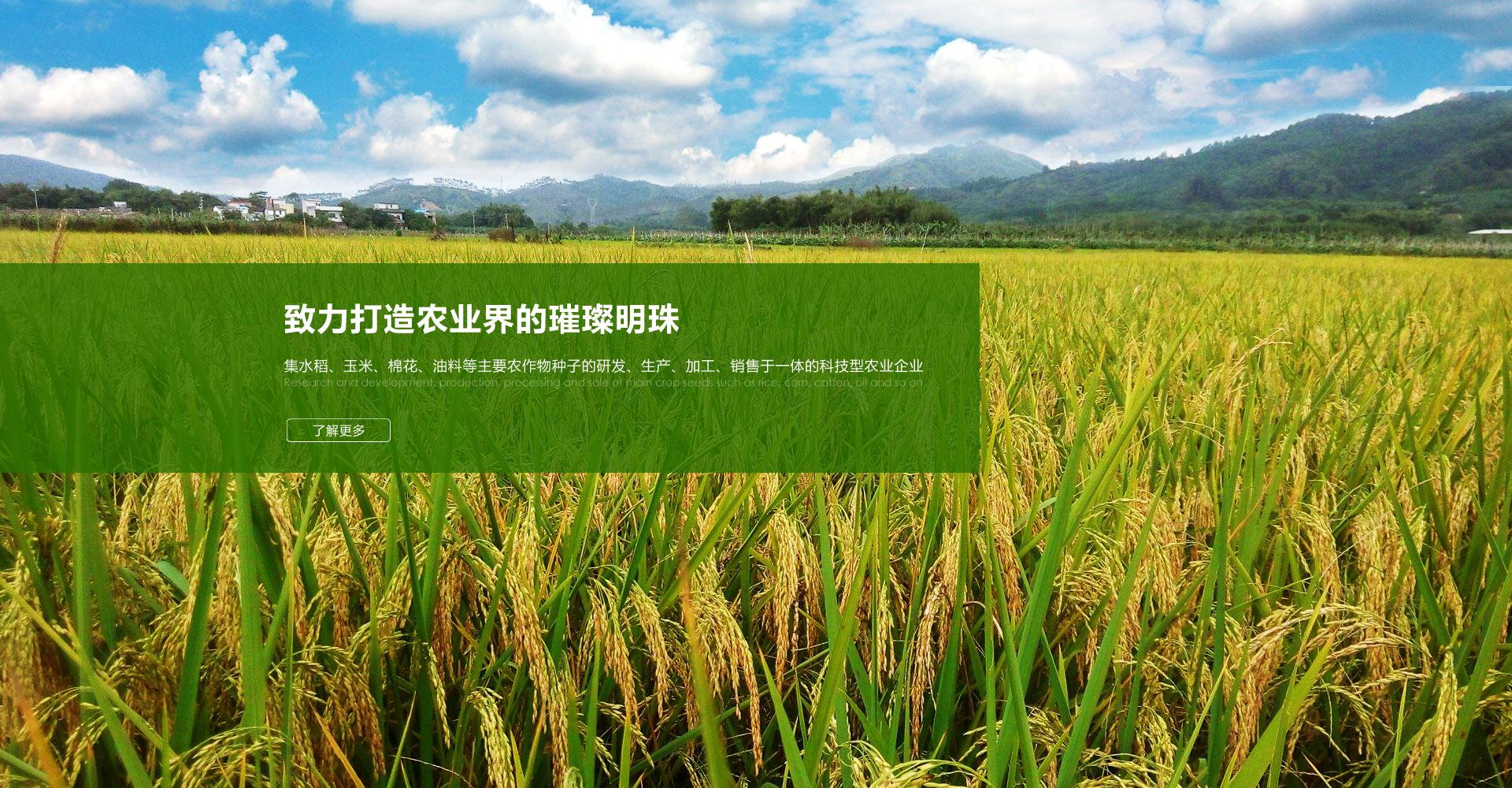 http://1707180009.pool1-site.make.yun300.cn/zjjg.html?t=1510155437563